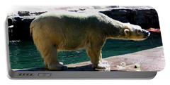 Portable Battery Charger featuring the photograph Polar Bear 3 by Rose Santuci-Sofranko