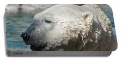 Polar Bear Club Portable Battery Charger