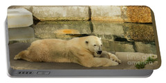 Polar Bear Poolside Portable Battery Charger