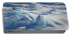 Portable Battery Charger featuring the photograph Polar Bliss II by Doug Gibbons