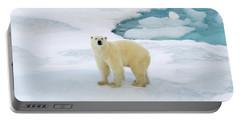 Polar Gaze Portable Battery Charger