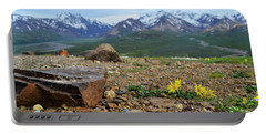 Portable Battery Charger featuring the photograph Polychrome Pass, Denali by Zawhaus Photography
