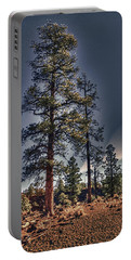 Ponderosa Pines At The Bonito Lava Flow Portable Battery Charger