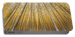 Portable Battery Charger featuring the photograph Poplar Tree Farm Symmetry In Oregon by Jit Lim