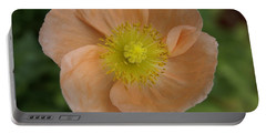 Portable Battery Charger featuring the photograph Poppy by Heidi Poulin