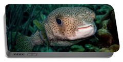 Porcupine Fish Portable Battery Charger