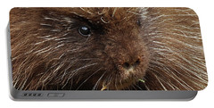 Portable Battery Charger featuring the photograph Porcupine by Glenn Gordon