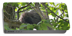 Porcupine Portable Battery Charger