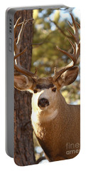 Portable Battery Charger featuring the photograph Portrait Of A 15-point Buck by Max Allen