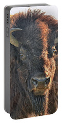 Portrait Of A Buffalo Portable Battery Charger