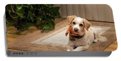 Portrait Of A Dog Portable Battery Charger