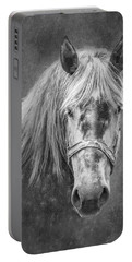 Portrait Of A Horse Portable Battery Charger by Tom Mc Nemar