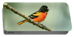 Portrait Of A Singing Baltimore Oriole Portable Battery Charger