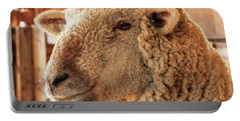 Portrait Of A Southdown Sheep Portable Battery Charger