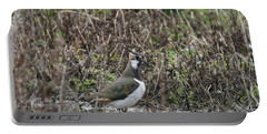 Portrait Of Beautiful Lapwing Bird Seen Through Reeds On Side Of Portable Battery Charger