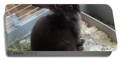 Portable Battery Charger featuring the photograph Portrait Of Bunbunz by Denise Fulmer