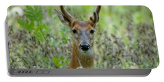 Portriat Of Male Deer Portable Battery Charger