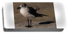 Posing Laughing Gull Portable Battery Charger