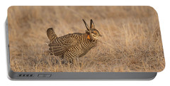 Portable Battery Charger featuring the photograph Prairie Chicken 6-2015 by Thomas Young