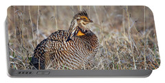 Portable Battery Charger featuring the photograph Prairie Chicken - Portrait by Nikolyn McDonald
