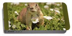 Prairie Dog Portable Battery Charger by Nancy Landry