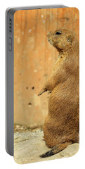 Portable Battery Charger featuring the photograph Prairie Dog Profile by Robin Regan