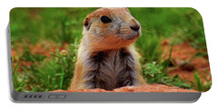 Prairie Dogs 007 Portable Battery Charger by George Bostian