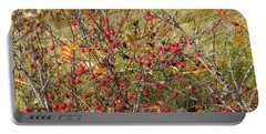 Prairie Rosehips Portable Battery Charger