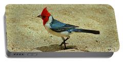 Prancing Brazil Cardinal Portable Battery Charger