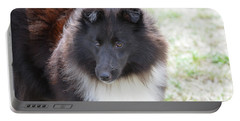 Pretty Black And White Sheltie Dog Portable Battery Charger by DejaVu Designs