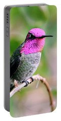 Pretty In Pink Anna's Hummingbird Portable Battery Charger