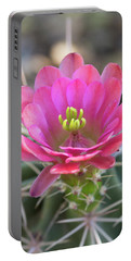 Portable Battery Charger featuring the photograph Pretty In Pink Hedgehog  by Saija Lehtonen