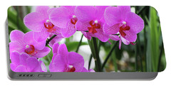 Pretty Pink Phalaenopsis Orchids #2 Portable Battery Charger