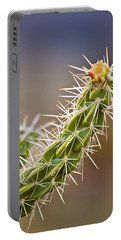 Prickly Branch Portable Battery Charger