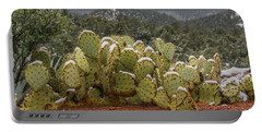 Cactus Country Portable Battery Charger