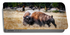 Primal Portable Battery Charger