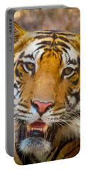 Prime Tiger Portable Battery Charger