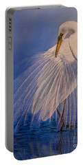 Princess Of The Mist Portable Battery Charger