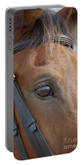 Portable Battery Charger featuring the photograph Prinz by Jim and Emily Bush