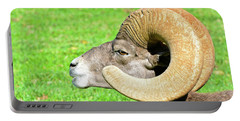 Profile Of A Male Bighorn Sheep Portable Battery Charger
