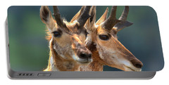 Pronghorn Antelope Pair Portable Battery Charger