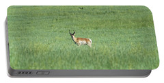 Pronghorn In A Sea Of Green Portable Battery Charger