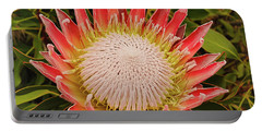Protea I Portable Battery Charger by Cassandra Buckley
