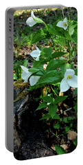 Portable Battery Charger featuring the photograph Protected Wild Trillium  by LeeAnn McLaneGoetz McLaneGoetzStudioLLCcom