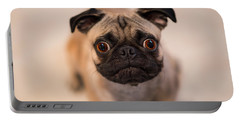Portable Battery Charger featuring the photograph Pug Dog by Laura Fasulo