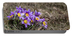 Portable Battery Charger featuring the photograph Pulsatilla by Andreas Levi
