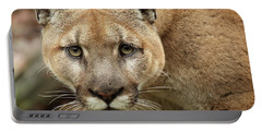 Portable Battery Charger featuring the photograph Puma Male Approaching by Max Allen