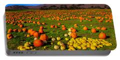 Pumpkin Field Santa Cruz Portable Battery Charger