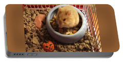 Portable Battery Charger featuring the photograph Pumpkin With Pumpkin by Denise Fulmer