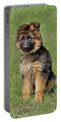 Portable Battery Charger featuring the photograph Puppy Halo by Sandy Keeton